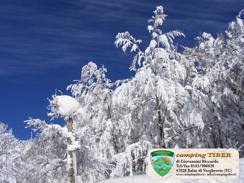 panorama-neve-camping-tiber-fumaiolo-balze