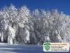 piante-neve-camping-tiber-fumaiolo-balze