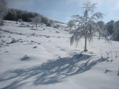 monte-aquilone-balze-camping-tiber